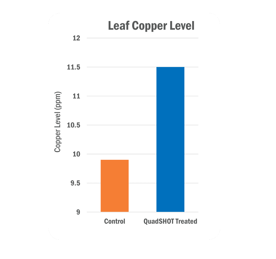 Leaf Copper Level Graph