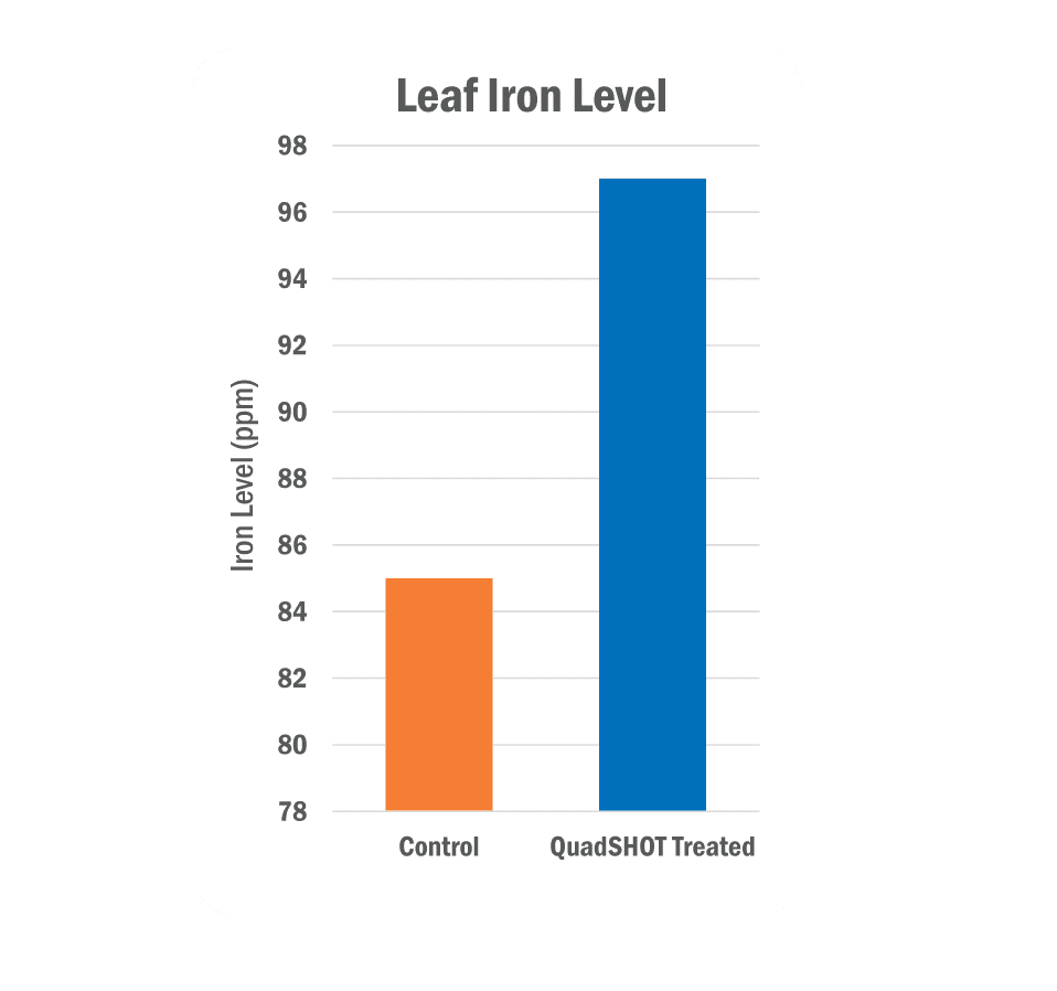 Leaf Iron Level Graph
