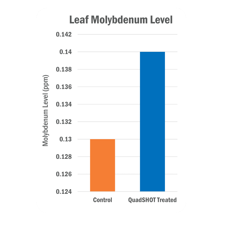 Leaf Molybdenum Level Graph